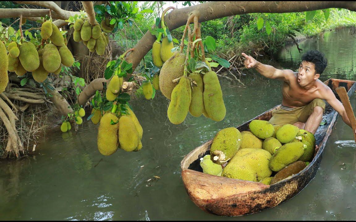 """世界上最重的水果""""菠萝蜜"""",看看草帽哥如何吃法?"""