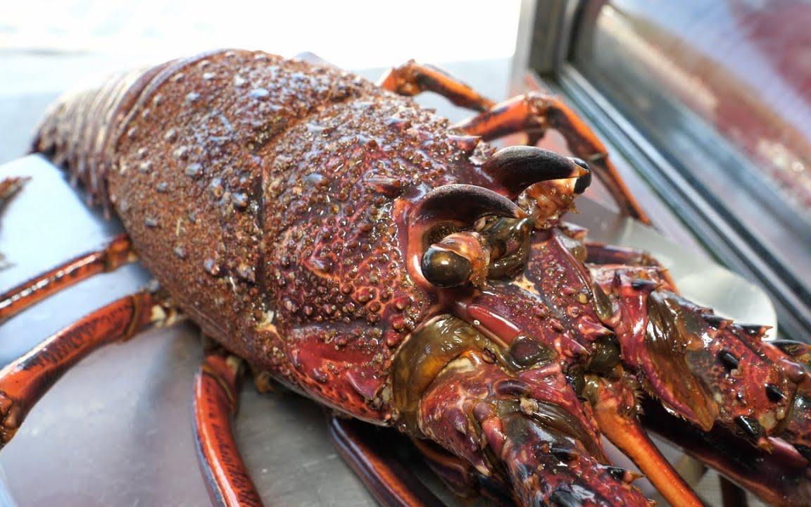 澳洲龙虾四吃 (刺身, 清蒸, 粥, 味噌汤) - 恒春美食阿兴生鱼片