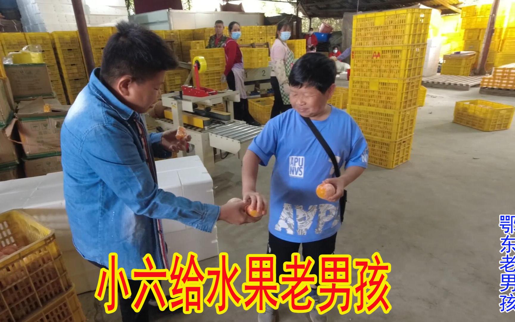 老男孩去小六桂林的水果仓库,这场面不一般,难怪他们做得这么好