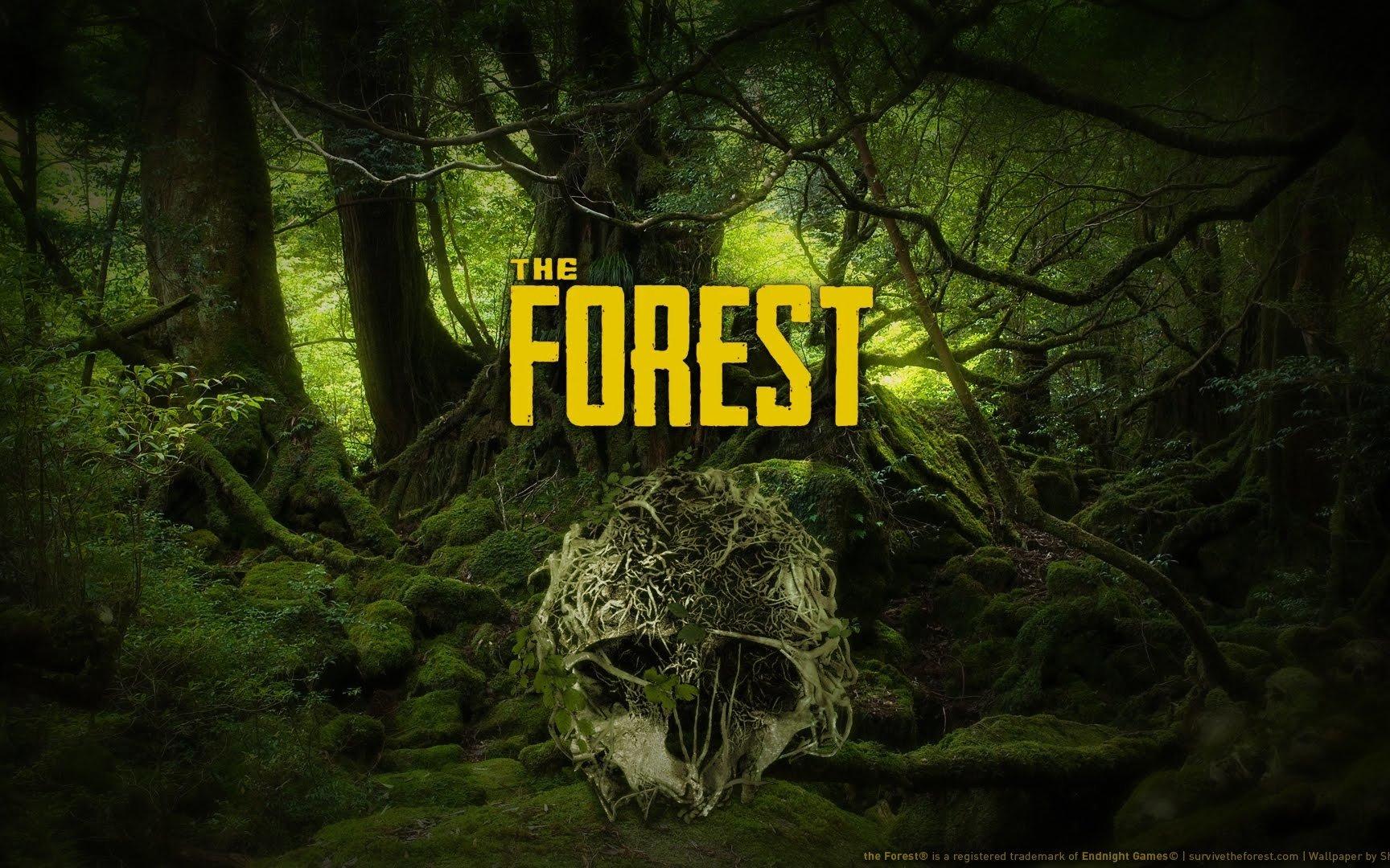 森林:1san值狂掉啊这游戏第一天就下野人洞穴