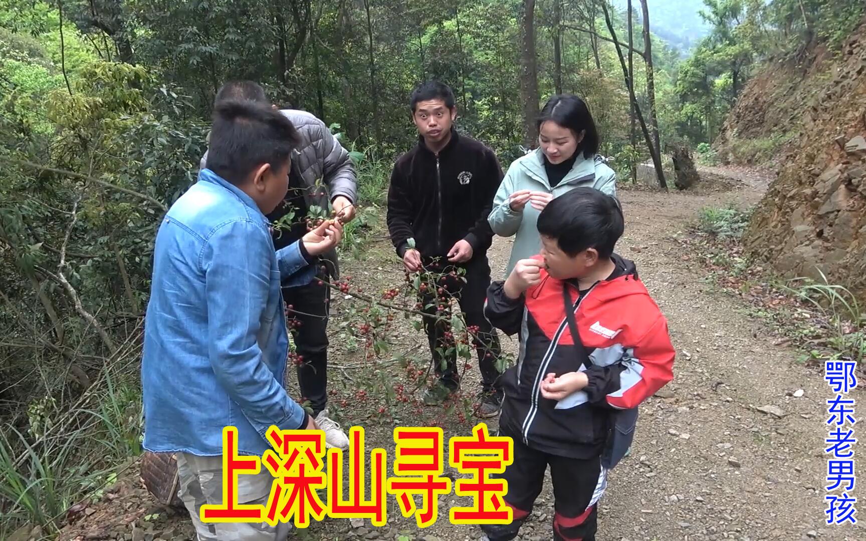 丫头哥带老男孩和小六去深山寻宝,爬到山顶一片山货,可惜都坏了