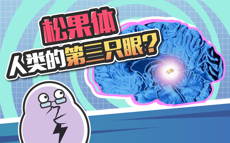 存在于人脑中的松果体,据说激活后能感知宇宙能量?