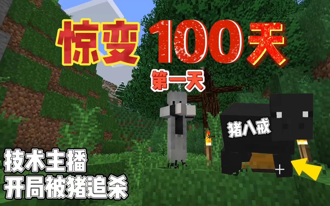 我的世界惊变100天:技术主播开局就被猪追杀!