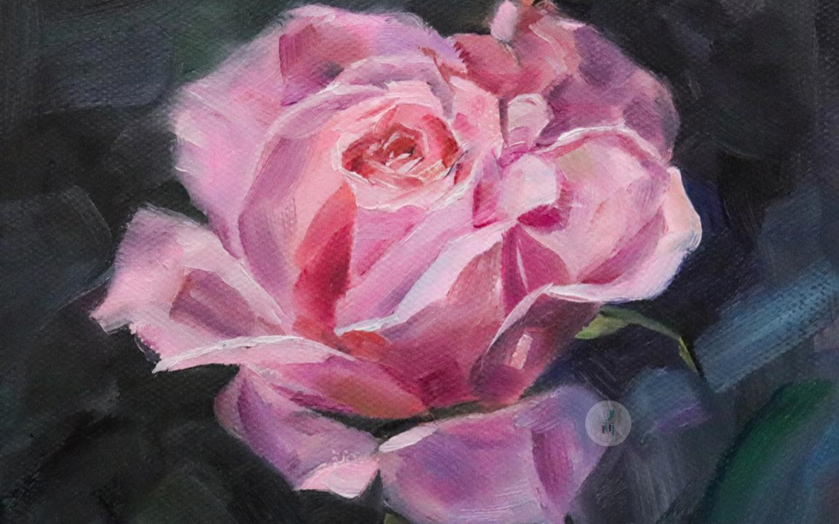 油画公开课 粉玫瑰