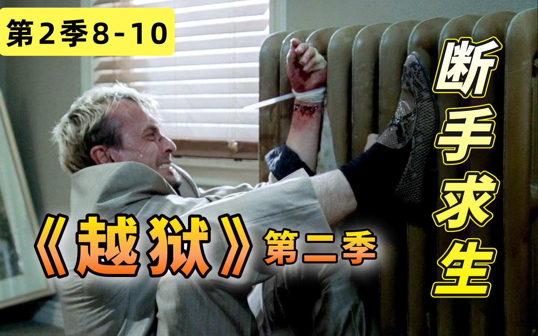 【阿斗】T-bag断手逃生,剧情跌宕起伏比坐过山车还刺激!美剧《越狱》第二季8-10