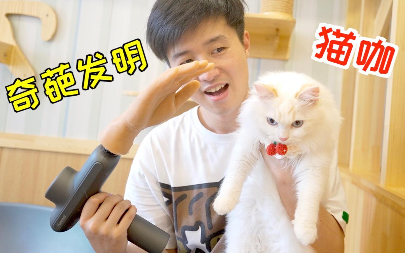 带着筋膜枪改的撸猫器去猫咖,猫都被撸傻了!其他客人都想买!