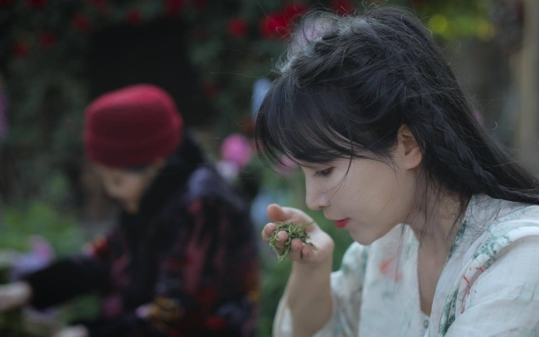 深深扎根在中华土地上,历久弥新的茶文化