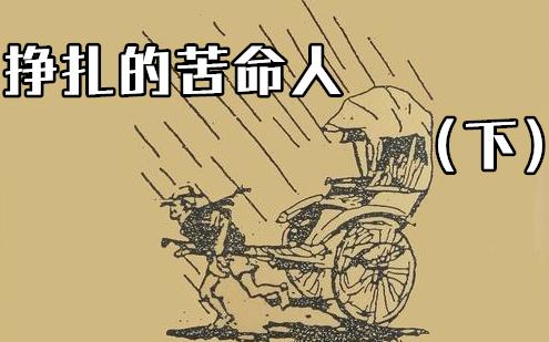 《影视盲点》于不公道世间挣扎的苦命人,跌落深渊【下】咱们重新看看骆驼祥子~