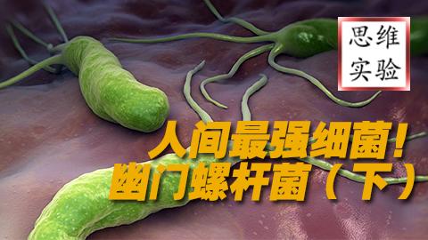 【思维实验室】来自地狱 人间最强细菌---幽门螺杆菌(下)