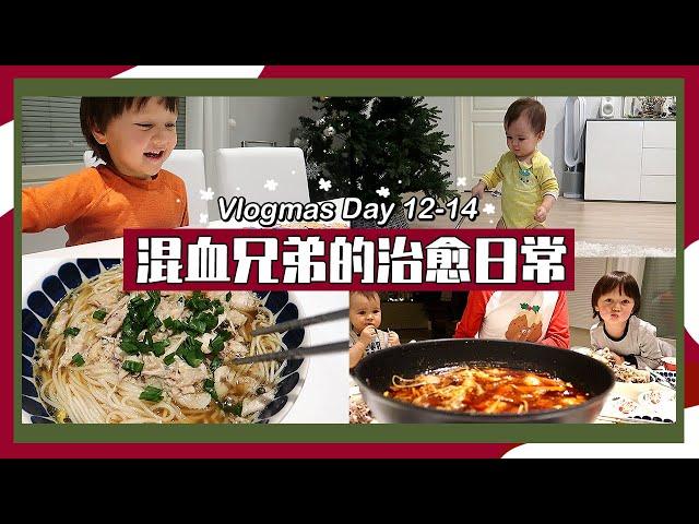 vlogmas day 12-14 | 猪骨高汤火锅 | 家常鸡汤面 | 中国超市大采购 | 打扫两个孩子的家 | 包包兄弟的治愈日常